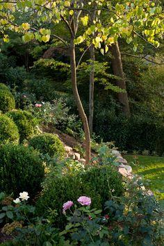 Garden  Photographs By Gordon Beall