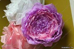 """Огромные цветы """"Пионы"""" из гофрированной бумаги, своими руками - Цветы из бумаги - Поделки из бумаги - Каталог статей - Рукодел.TV"""