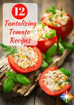Tomatoes have so many nutritional benefits, which means they aren't only delicious, but very healthy for us! Whether you love tomatoes or not, you will want to try some of these tantalizing tomato recipes ASAP!