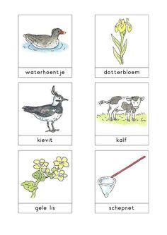 Woordkaarten Bas 'Bij de sloot' 2 Dutch Phrases, Learn Dutch, Dutch Language, Sand And Water, Fauna, Speech Therapy, Preschool, Activities, Slot