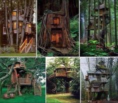 Treehouses! I would love to have these as regular houses!!