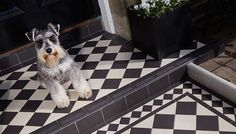 The Dorchester Pattern, Victorian Floor Tiles by Original Style Victorian Porch, Victorian Tiles, Hall Flooring, Porch Flooring, Front Door Steps, Front Path, Front Doors, Tiles Uk, Hall Tiles