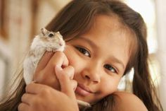 What Should Your Gerbil Eat?: Pet gerbil being held