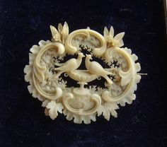 Antique Love Birds Doves Pliny French Ivory Celluloid Brooch Victorian Edwardian