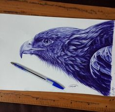 by Ahad Jahed (Iran) by albert_loewenstein Ballpoint Pen Drawing, Drawing S, Eagle Drawing, Pen Sketch, Art Sketches, Pencil Photo, Jungle Art, Color Pencil Art, Amazing Drawings