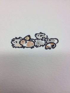 Watercolor guinea pig herd by ~Amargoenigma on deviantART