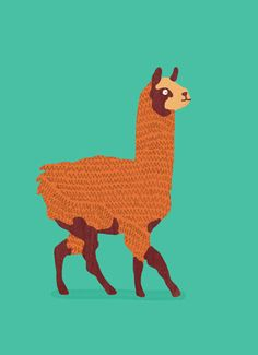 alpaca tattoo - Google Search