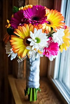 I'm thinking gerber daisy for flowers....they are the only flowers I think are cute. lol.