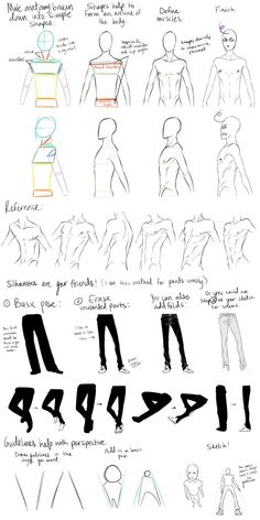 Male Anatomy Reference and Perspective Tips by ~DeviantTear on deviantART