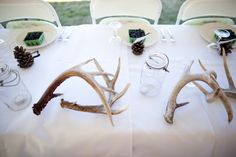 antler centerpieces | Rustic DIY Family Farm wedding on oh lovely day | Jamie Delaine Photography