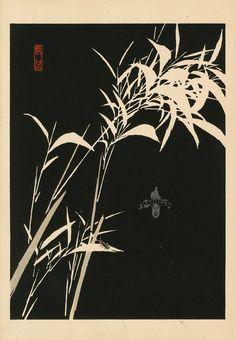 from Kyôbashi; Value Painting, Painting & Drawing, Linocut Prints, Art Prints, Japanese Plants, Snowboard Design, Japanese Art Styles, Plant Drawing, Japanese Graphic Design