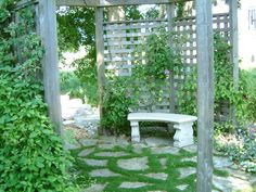 landscaping ideas | ideas at organic vegetable gardening blog Dry garden landscaping ideas ...