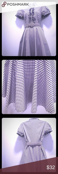 Gingham dress size 4 A blast from the past that keeps you comfortable but stylish. Matching belt included! Slight yellowing of the belt has occurred but it's beautiful with another belt. Very versatile and modest. Perfect for summer. Dresses