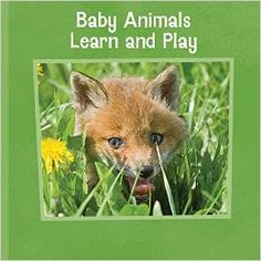 Mimic these cute, cuddly baby creatures with your own movements, including the bear, turtle, fox, and more! #mgtbooks