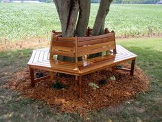 Wrap Around Tree Bench - out in the back yard, this is a really lovely idea for resting ones feet awhile!