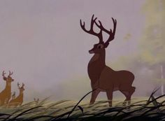 The great prince of the forest.....Bambi movie