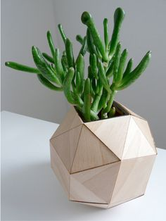Polyhedron Vase, Modern Design Wood Veneer Origami Vase with Glass Insert