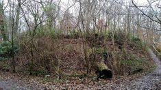 Nachdem ich ja bereits im Naturschutzgebiet Höltigbaum unterwegs war, ging ich nun in das Naturschutzgebiet Stellmoor–Ahrensburger Tunneltal. Das Gebiet ist fast direkt mit dem Höltigbaum verbunden und kann somit wunderbar zusammen erkundet werden. Ich habe allerdings in diesem Fall meinen Startpunkt an den U-Bahnhof Ahrensburg Ost verlegt.