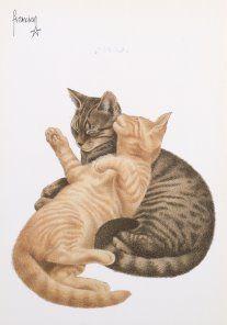 Postkaarten    Francienªs Katten    Francien Westering, van    C6161    Katten (Rood), Postkaarten, Tekeningen, Dieren, Katten,