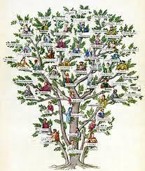 """Képtalálat a következőre: """"family tree"""""""