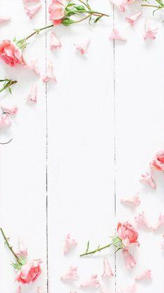 nice Flower flowers iphone wallpaper Tumblr-18
