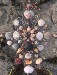 Shell and water themed mandala at beach Seashell Art, Seashell Crafts, Drunvalo Melchizedek, Sea Witch, Water Witch, Crystal Grid, Sacred Geometry, Sea Shells, Images