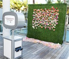 hedge and rose photo backdrop http://www.itgirlweddings.com/blog/9-incredible-ways-to-use-hedges