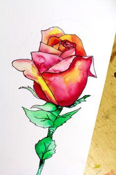 Still Life Roses 101