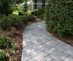 This kind of walkway to front door is a quite inspiring and glorious idea Concrete Patios, Concrete Front Steps, Stamped Concrete Driveway, Concrete Pathway, Concrete Backyard, Front Door Landscaping, Front Yard Walkway, Landscaping Ideas, Front Porch