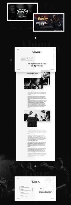 Tesla Boy - web site music group.Concept on Web Design Served