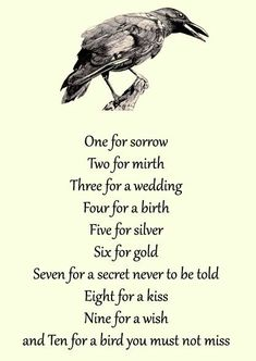 One for Sorrow Nursery Rhyme<<<------- writing prompt? Writing Help, Writing Tips, Writing Prompts, Poem Quotes, Life Quotes, Rhyming Quotes, Raven Quotes, Sorrow Quotes, Qoutes