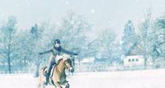 EQWO #Glücksmomente, 03. Dezember   Angelina Kannegießer  #glücksmoment #adventkalender #pferdeliebe #pferd #pferdefotografie Snow, Outdoor, December, Outdoors, Outdoor Games, Outdoor Life, Human Eye