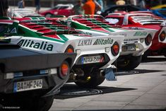 The World Lancia Stratos Meeting Is Exactly As Incredible As It Sounds - Petrolicious S Car, Rally Car, Maserati, Ferrari, European Championships, F1 Drivers, Racing Team, Car Photography, Go Kart