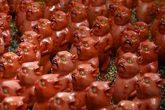 pigs.jpg (400×267)