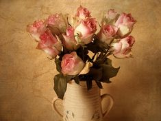 Roses Photograph - Soft Spoken by Jessica Jenney