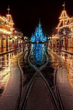 The magic kingdom at night