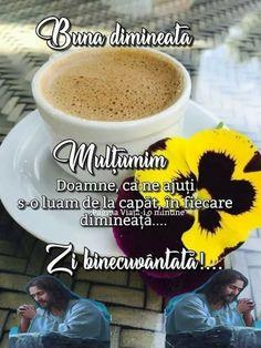 Motto, Good Morning, Bom Dia, Buen Dia, Bonjour, Mottos, Good Morning Wishes