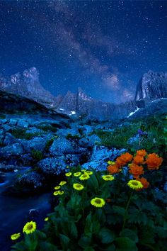 star on star / Alexander Yusupov