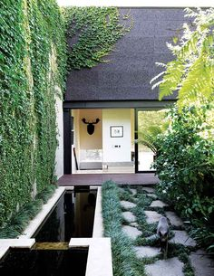 Narrow small garden