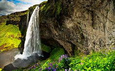 скалы, водопад, природа, скала, цветы