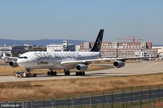 D-AIFE, Bild vom 25.08.2016 in Frankfurt, FRA, CN 434, Airbus A340-313, Lufthansa