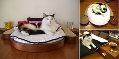 Is kitty looking for a new bedroom set? Then she'll have to check out this line of custom wood pet furniture from Argentinian company Cedel Pets & Style. Designed to reflect the styles of contemporary human bedroom furniture, each piece is custom crafted with great attention to detail.