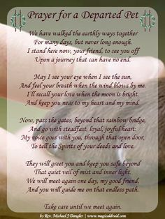 Prayer for a departed pet Loss of cat Love Dogs, All Dogs, Puppy Love, Puppy Pics, Animal Quotes, Dog Quotes, Animal Poems, Qoutes, Dog Sayings