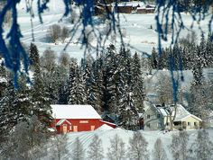 Farms in Morgedal by knutk007, via Flickr
