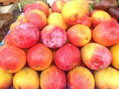 Mangos at the Hanalei Farmer's Market in Hanalei, Kaua'i.