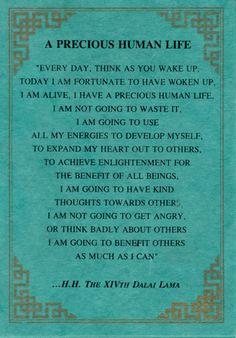 A precious human life...