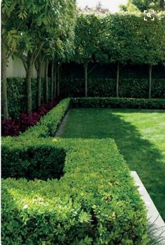 Steal these cheap and easy landscaping ideas​ for a beautiful backyard. Get our best landscaping ideas for your backyard and front yard, including landscaping design, garden ideas, flowers, and garden design. Small Courtyard Gardens, Formal Gardens, Back Gardens, Small Gardens, Outdoor Gardens, Vertical Gardens, Small Garden Hedges, Small Garden Trees, Front Courtyard