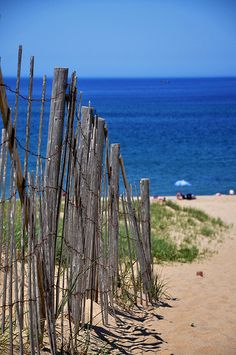Cape Cod Beach | Flickr - Photo Sharing!