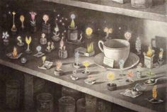 The things that Eric left behind - Shaun Tan
