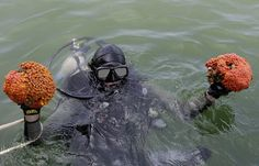 BP Oil Spill Is Much Worse Than People Think, Scientists Say